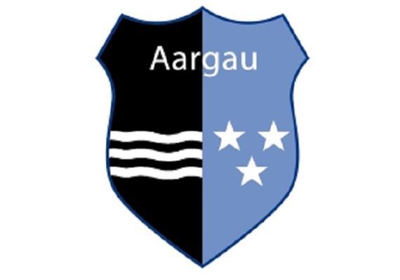 Pin Wappen Aargau