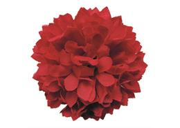 Red, Chic Chrysanthemums Forever Flowerz - Makes 30