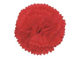 Red, Classic Carnations Forever Flowerz - Makes 30