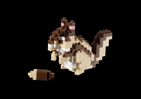 Streifenhörnchen /chipmunk