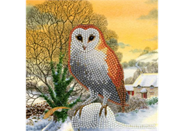 Winter Eule, Karte 18x18cm Crystal Art Card